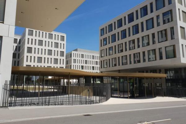 Banque Européenne D'investissement - Clôture en bambou