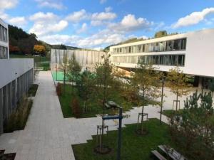 Lycée Edward Steichen - jardin intérieure