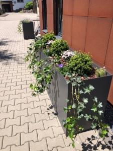 Bac à plante rectangulaire en alu
